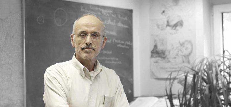 Prof. Harald A. Euler | Evolutionspsychologe
